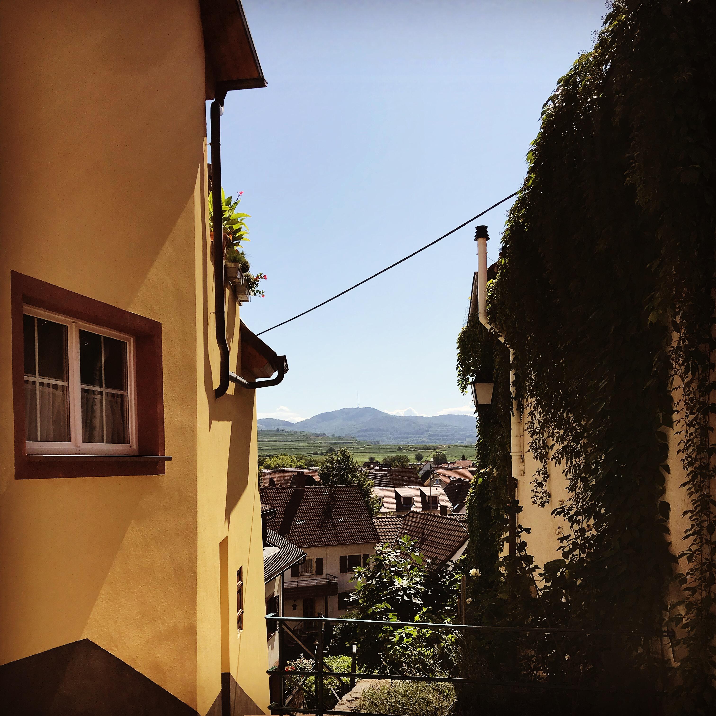 Burkheim Kaiserstuhl