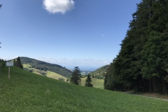 Münstertal
